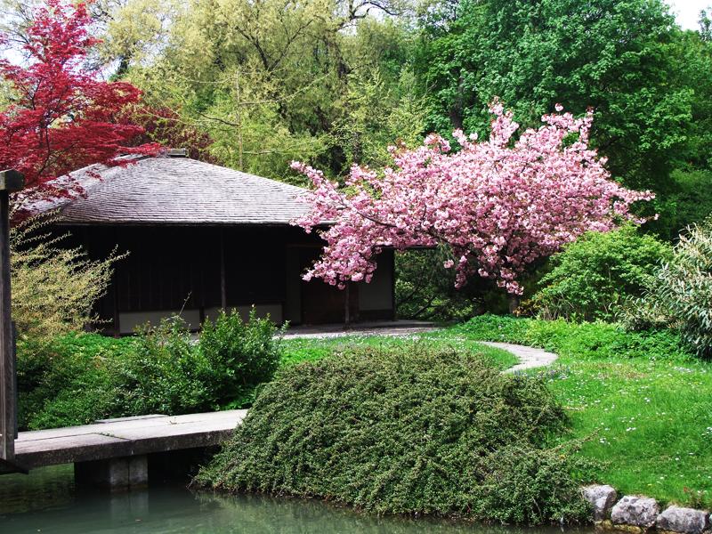 Japanisches Teehaus Kanshoan monachium munich