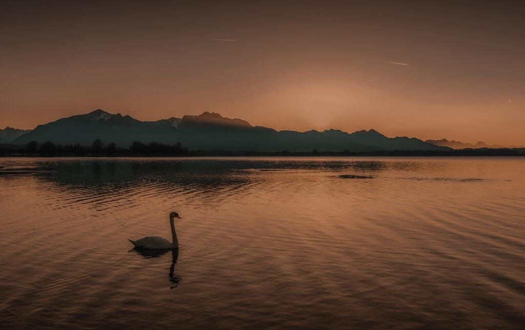 jezioro chiemsee bayern