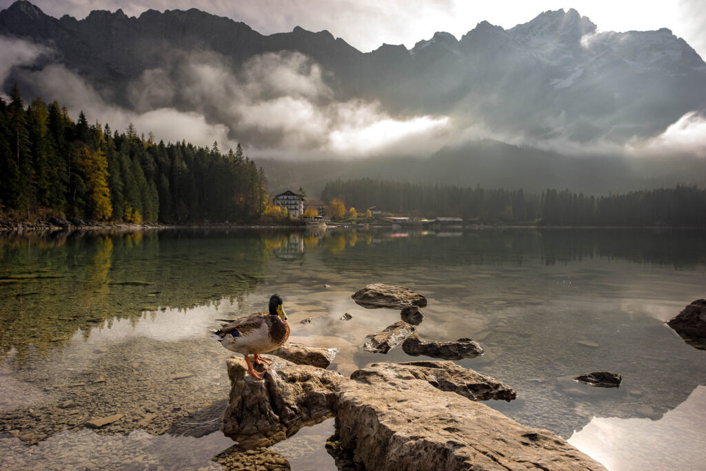 jezioro eibsee garmisch